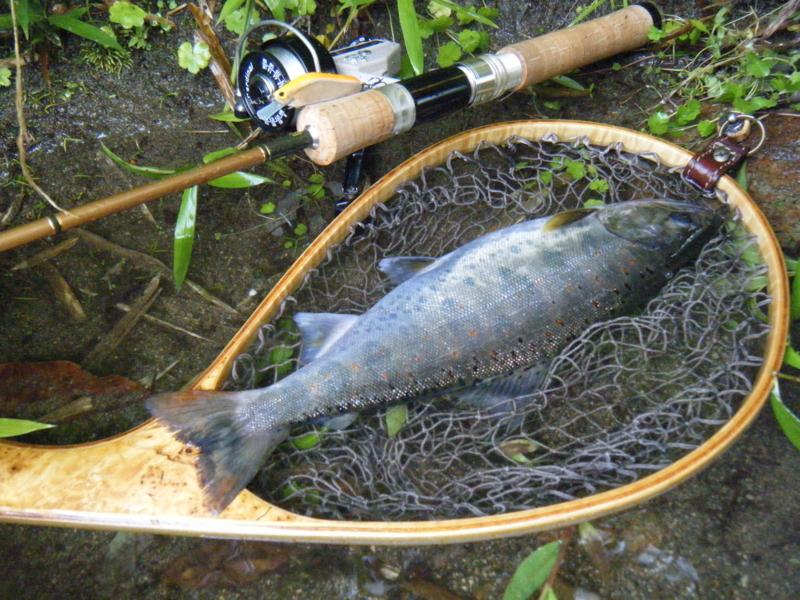 f:id:remember_the_trout:20140705061028j:plain