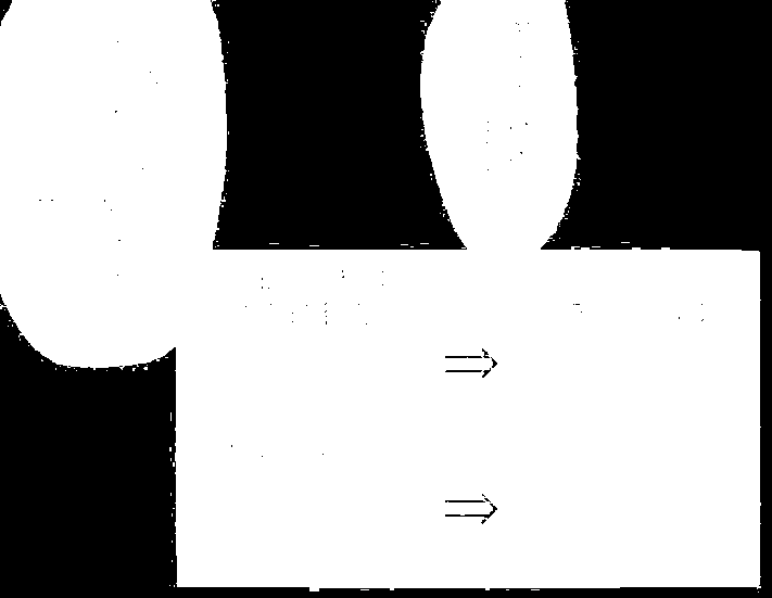 f:id:remy0420:20170203223607p:plain