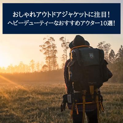 f:id:renasuya:20201013105224p:plain