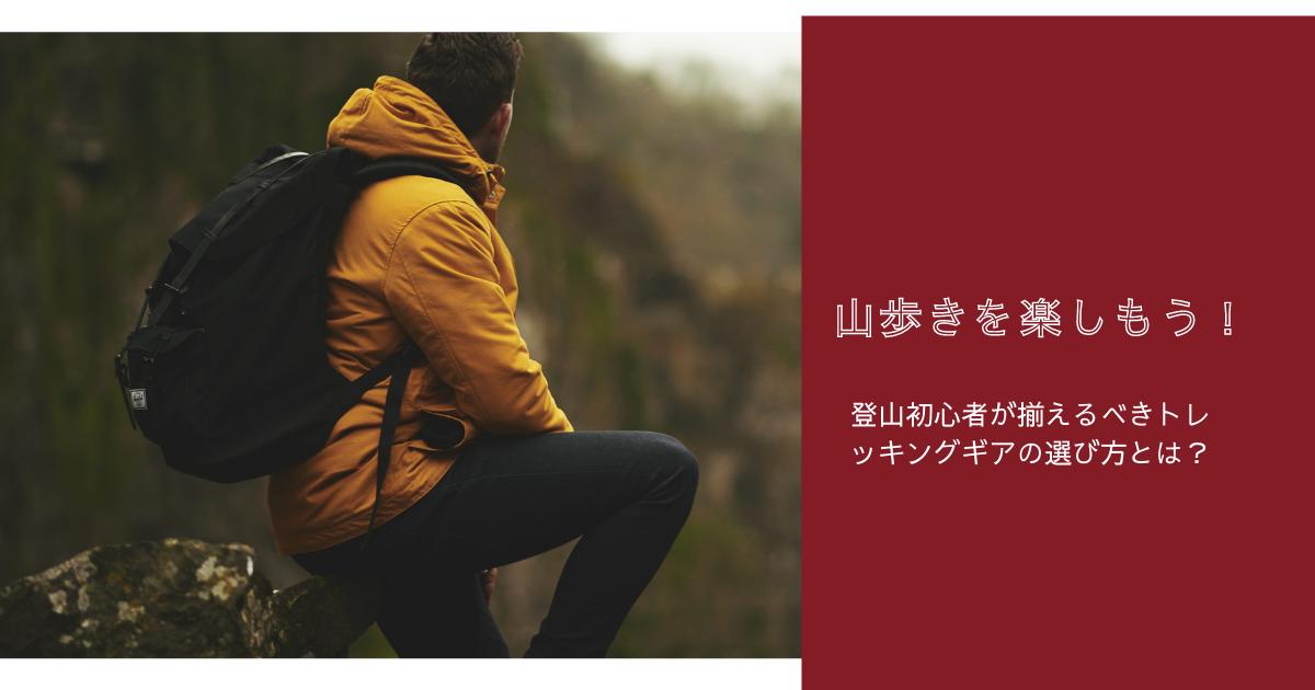 f:id:renasuya:20210331122658p:plain