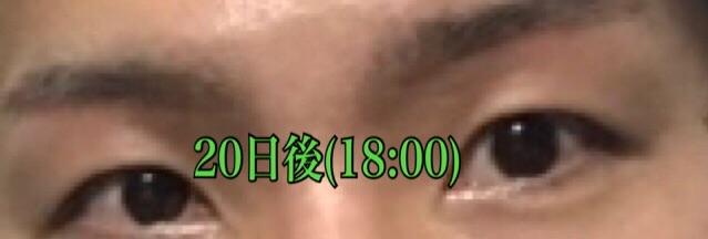 f:id:renji_tiger:20181027012539j:image