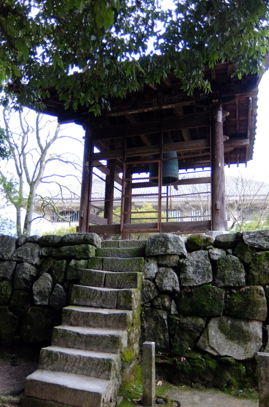 f:id:renjikoh:20150124101336j:image:w360
