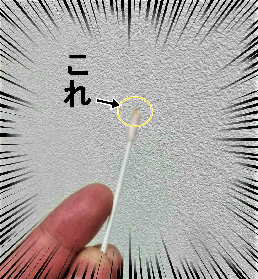 f:id:rennto-saikawa:20190808081812j:plain