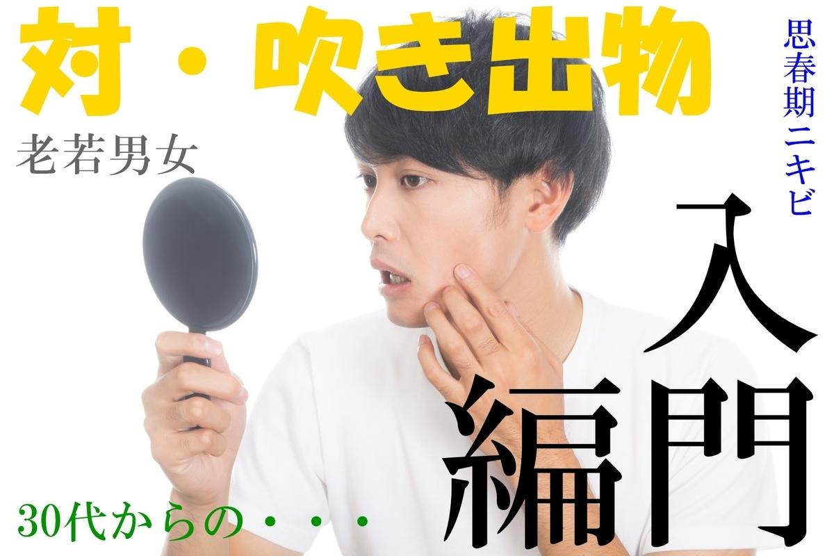 f:id:rennto-saikawa:20190905110412j:plain
