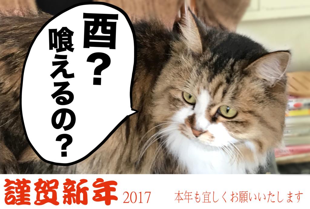 f:id:renpoo:20170101000409p:plain