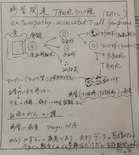 f:id:reo-lab:20180217061243j:image