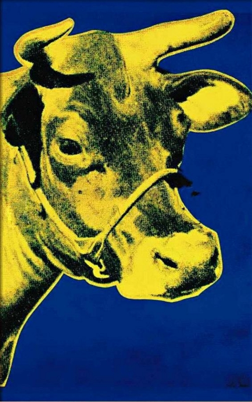 Cow Yellow on Blue Background