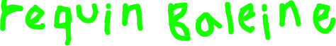 f:id:requinbaleine380:20091130221806j:image