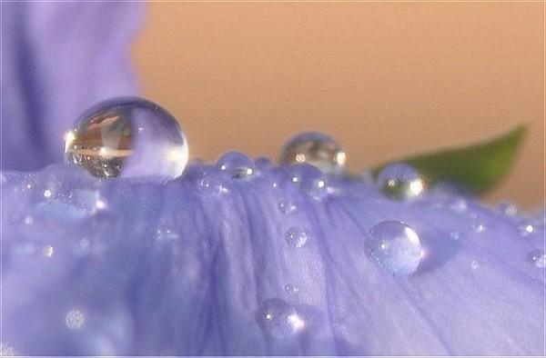 f:id:retoto:20110622194415j:image