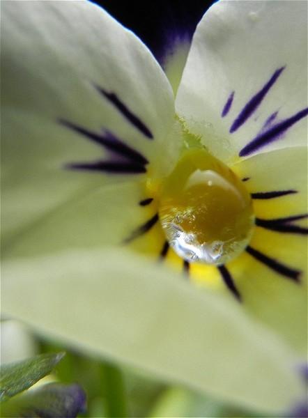 f:id:retoto:20110623203718j:image