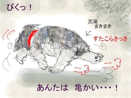 f:id:retoto:20120921224352j:image