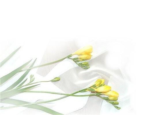 f:id:retoto:20121231171823j:image