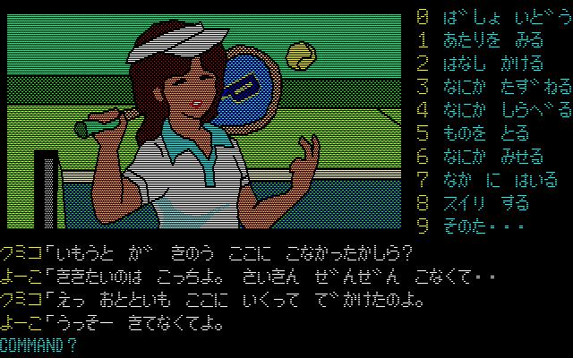 案内 軽井沢 誘拐
