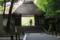 京都新聞写真コンテスト