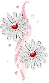 透明感のあるイラストー花(赤)