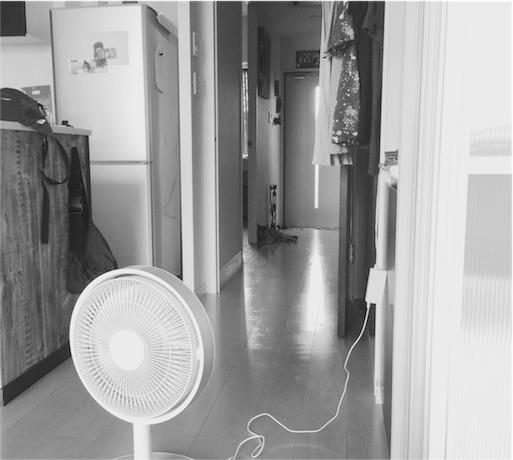 f:id:rezuteki-tsunatan-0909:20160918112447j:image