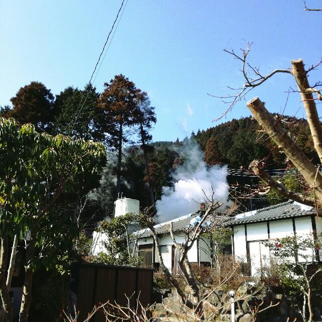 f:id:rezuteki-tsunatan-0909:20170316233051j:image