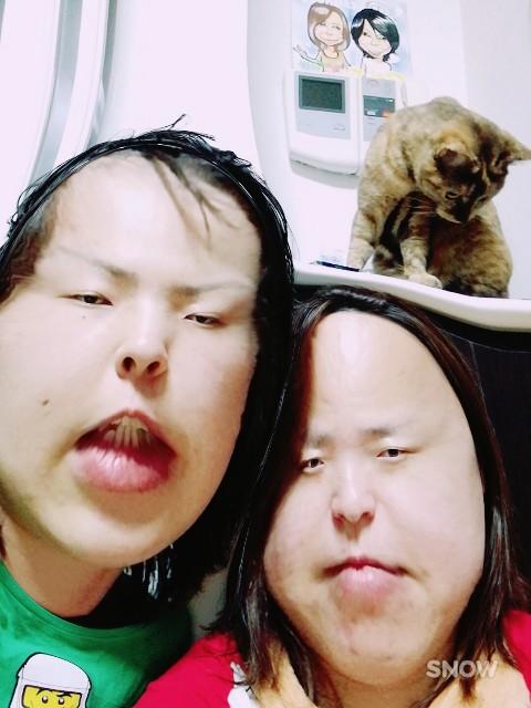 f:id:rezuteki-tsunatan-0909:20170603095948j:image