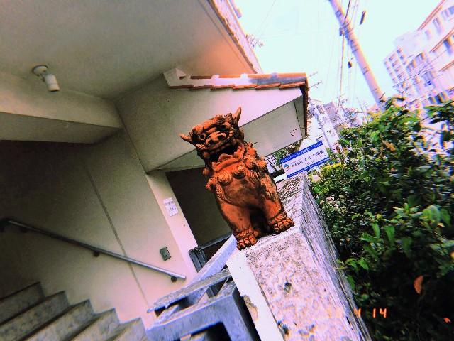 f:id:rezuteki-tsunatan-0909:20190416190619j:image