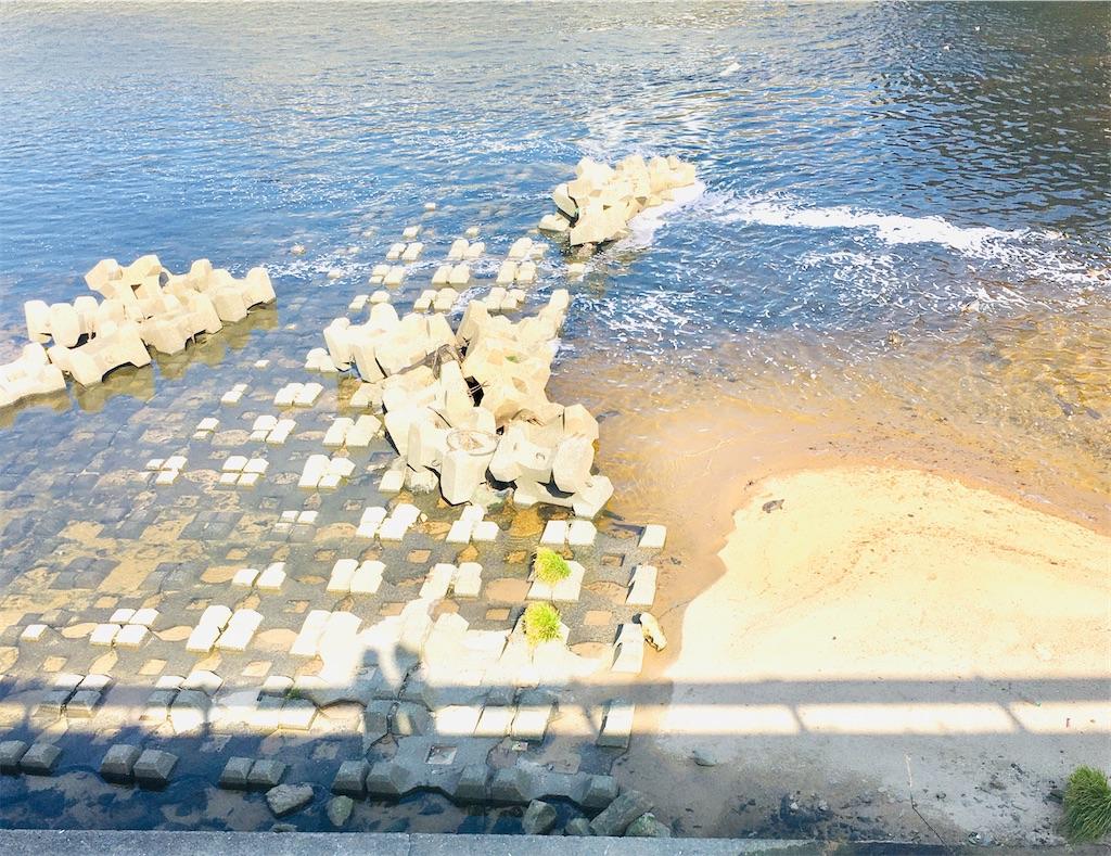 f:id:rezuteki-tsunatan-0909:20210221175831j:image