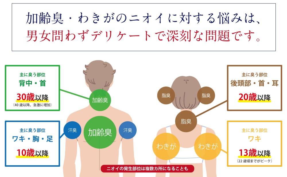 f:id:rgb-yokosuka:20190228192859j:plain
