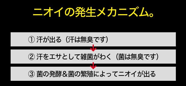 f:id:rgb-yokosuka:20190308181720j:plain