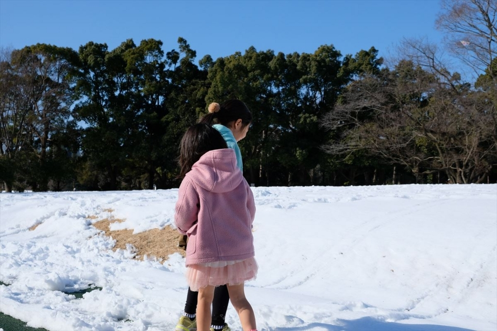東京、大雪の後の所沢航空記念公園