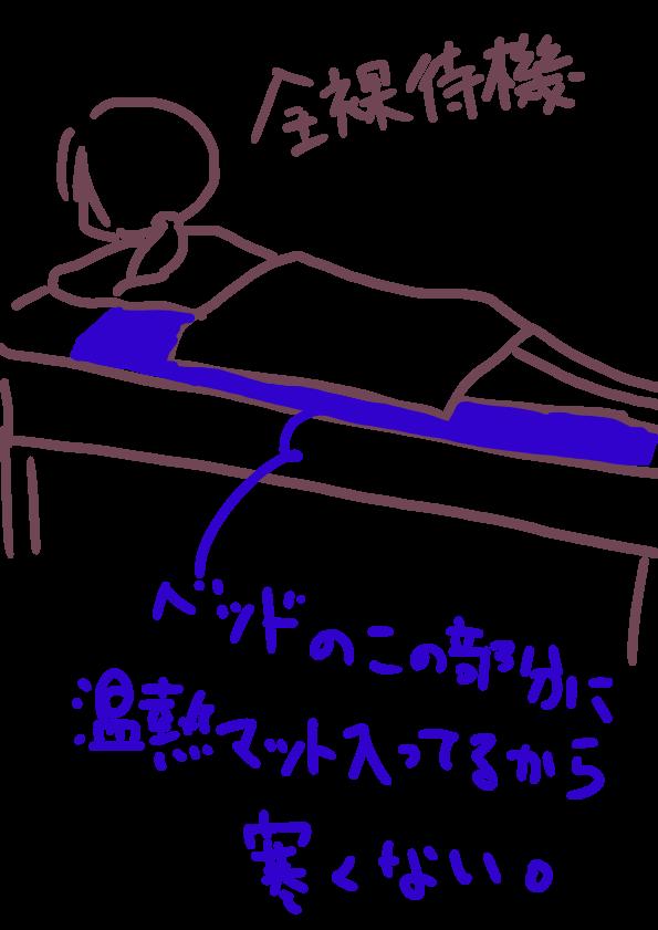f:id:rhoi:20170309181800p:plain