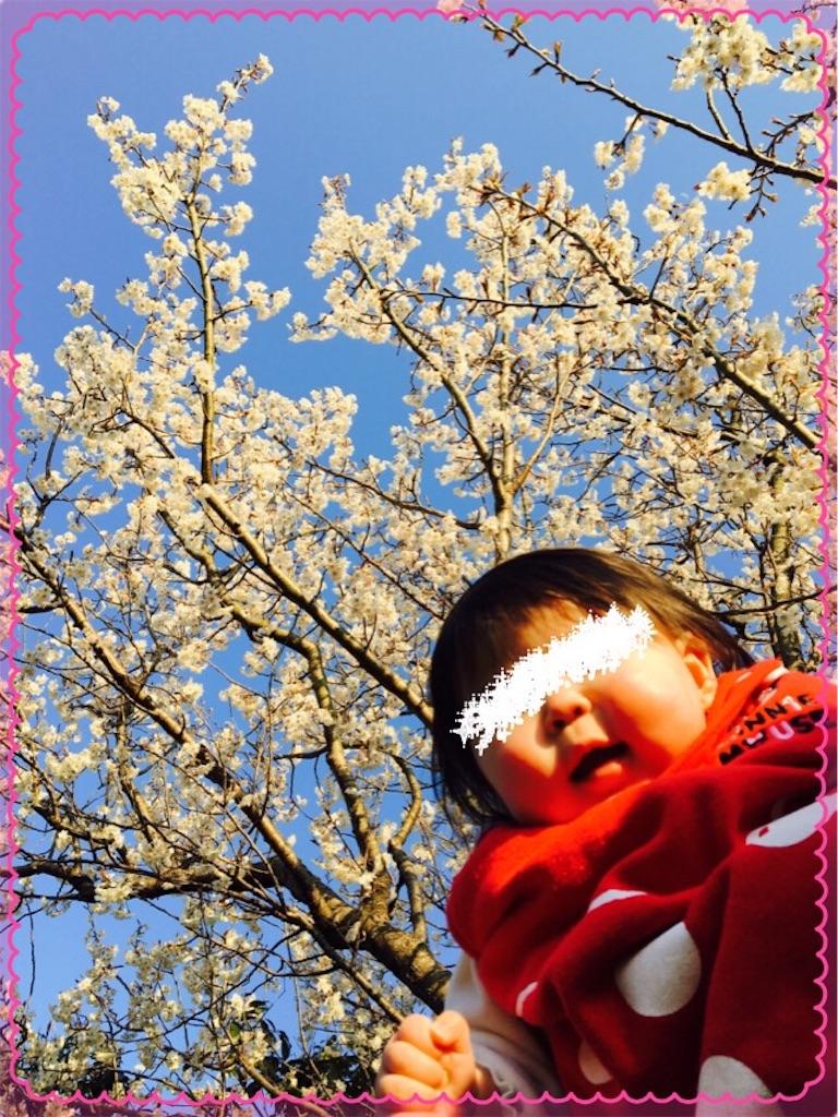 f:id:ribon-takara:20170404023139j:image