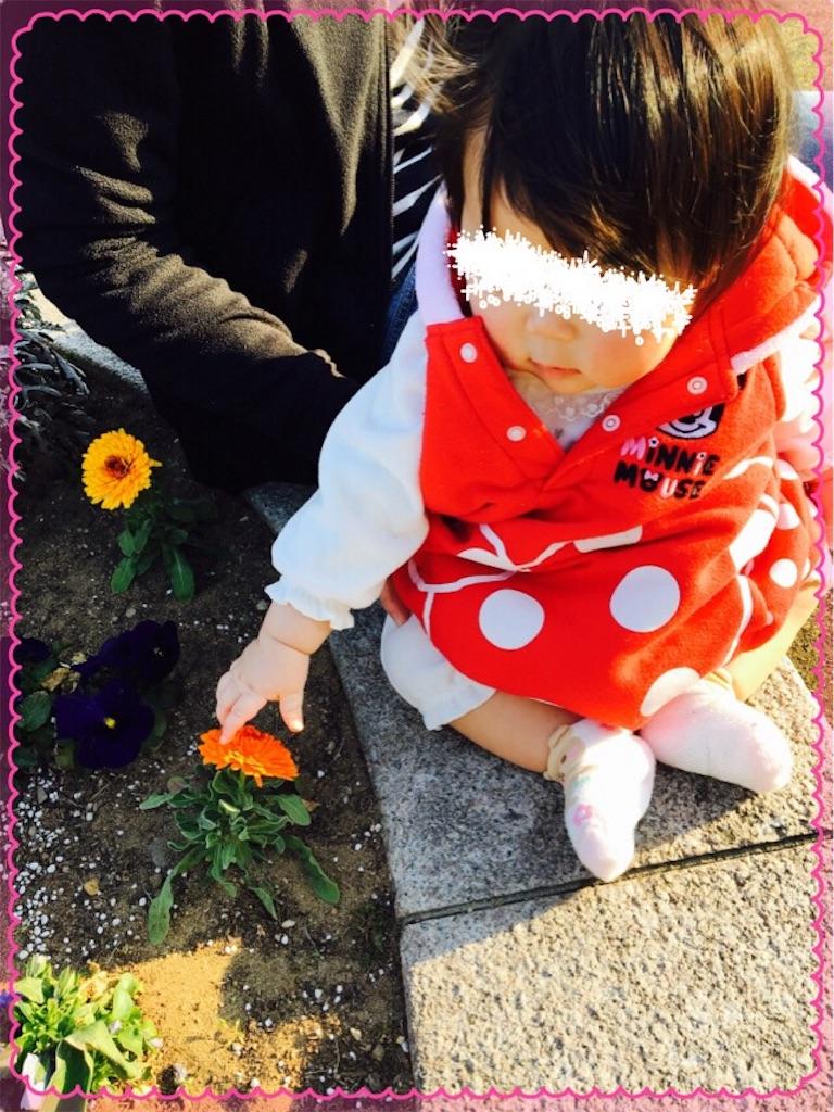 f:id:ribon-takara:20170404023935j:image