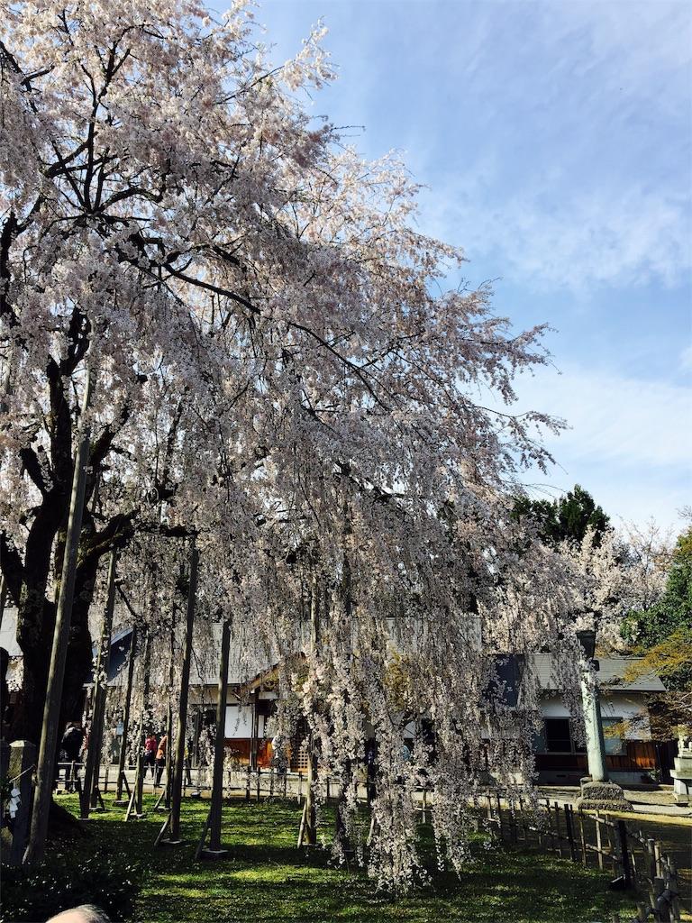 f:id:ribon-takara:20170413032217j:image