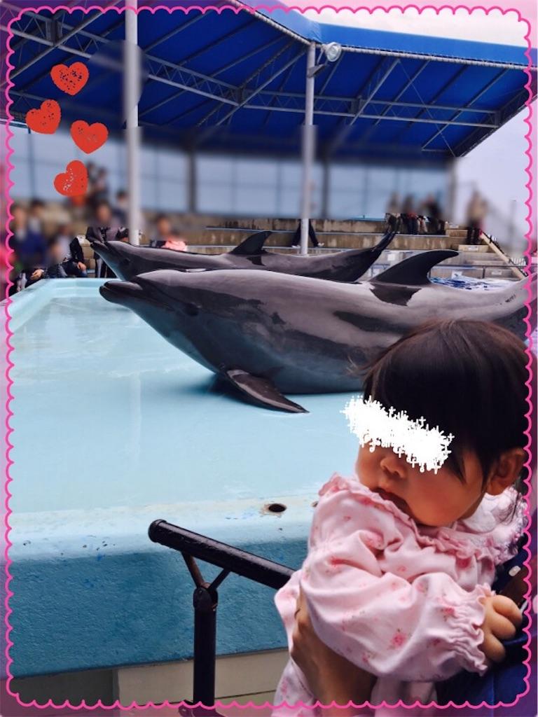 f:id:ribon-takara:20170415190400j:image