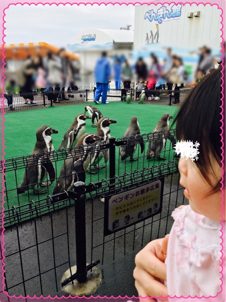 f:id:ribon-takara:20170416171747j:image