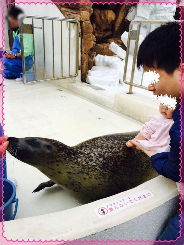 f:id:ribon-takara:20170416172525j:image
