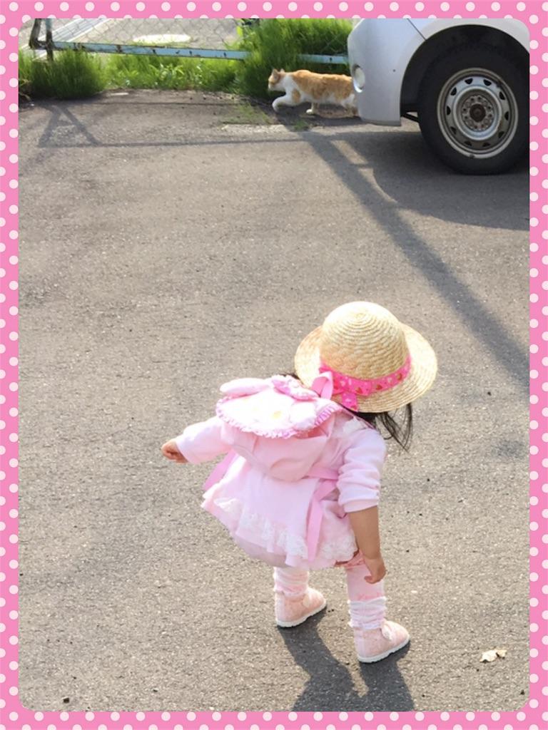 f:id:ribon-takara:20180424100842j:image