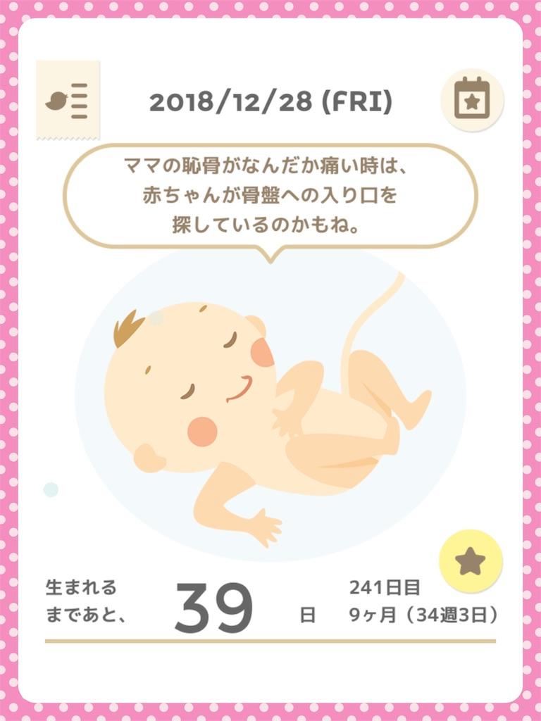 f:id:ribon-takara:20181229225402j:image