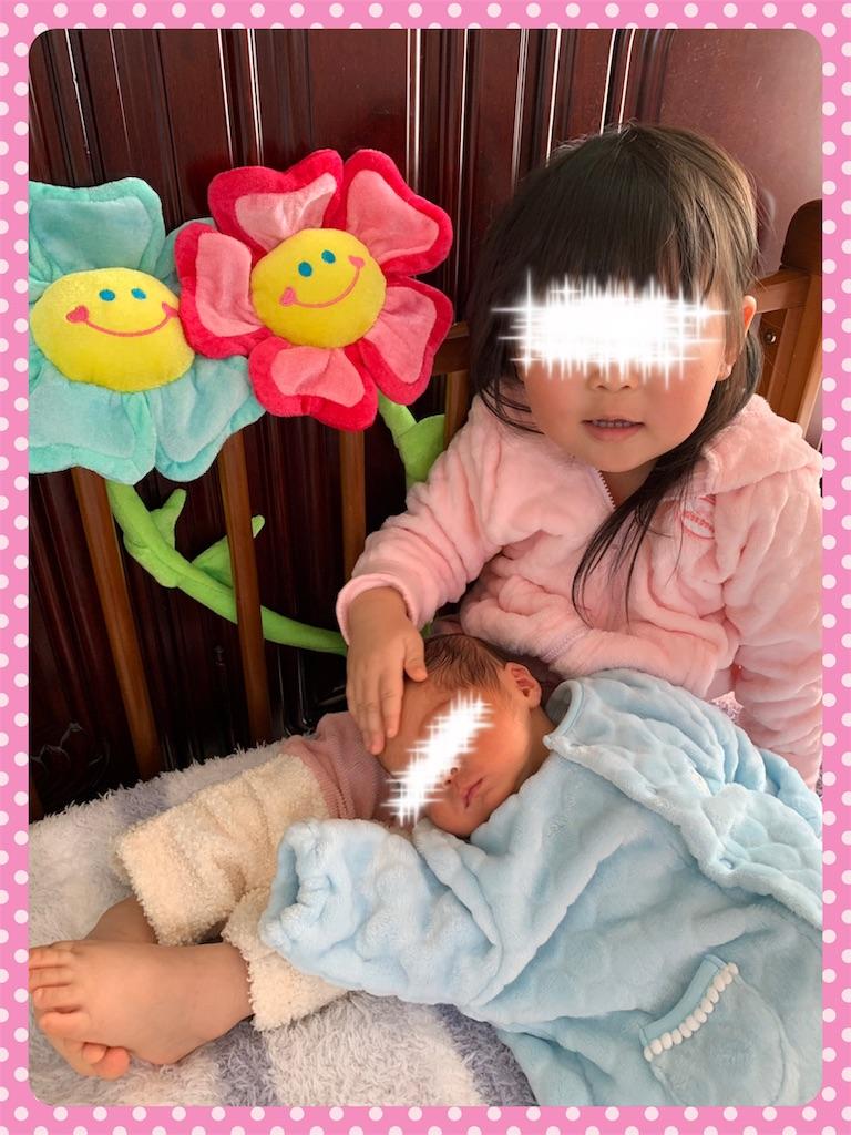 f:id:ribon-takara:20190202013019j:image