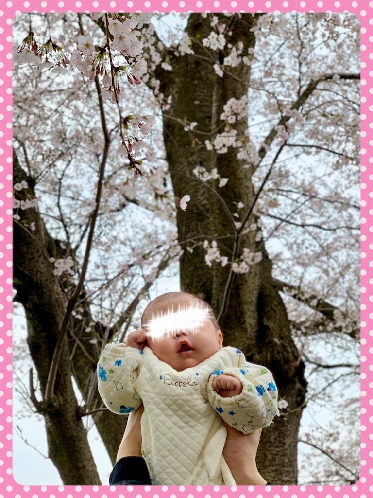 f:id:ribon-takara:20190423193651j:image
