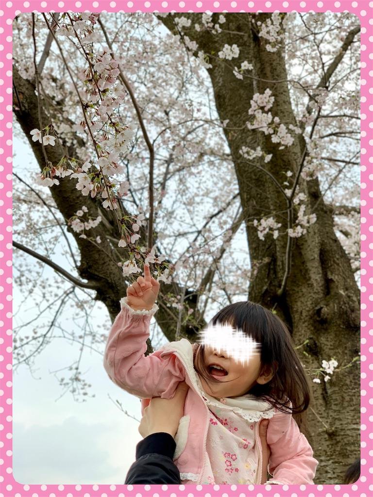 f:id:ribon-takara:20190423194227j:image