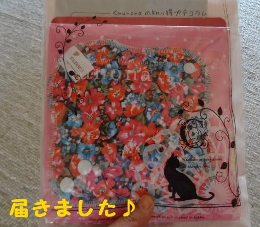 f:id:riceforcekuchikomi:20160325171824j:plain
