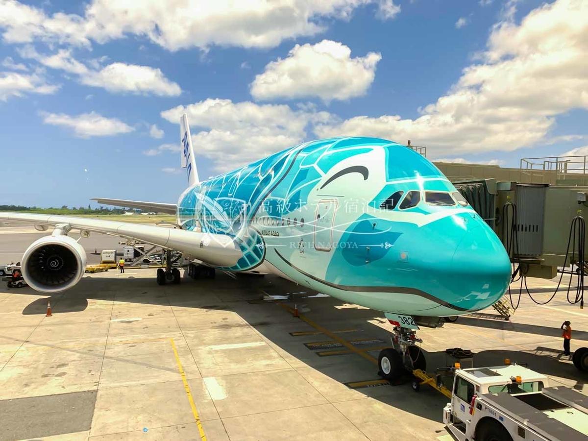 往路・復路ともに搭乗したエメラルドグリーンのANA「FLYING HONU(フライングホヌ)」2号機@ダニエル・K・イノウエ国際空港(旧ホノルル国際空港)
