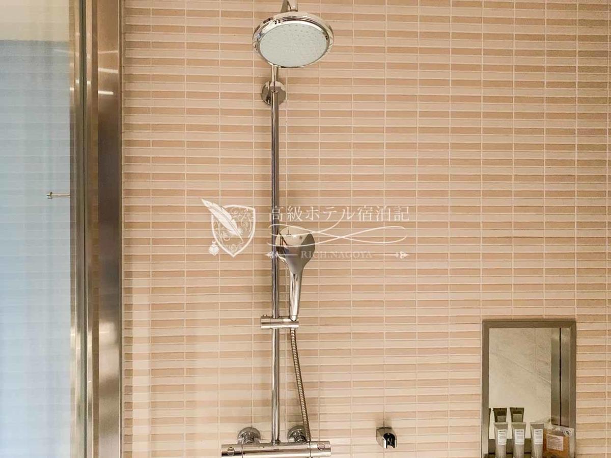 コーナーダブルクイーン(307号室/44.5㎡):シャワーはハンドタイプとレインタイプの2種類。