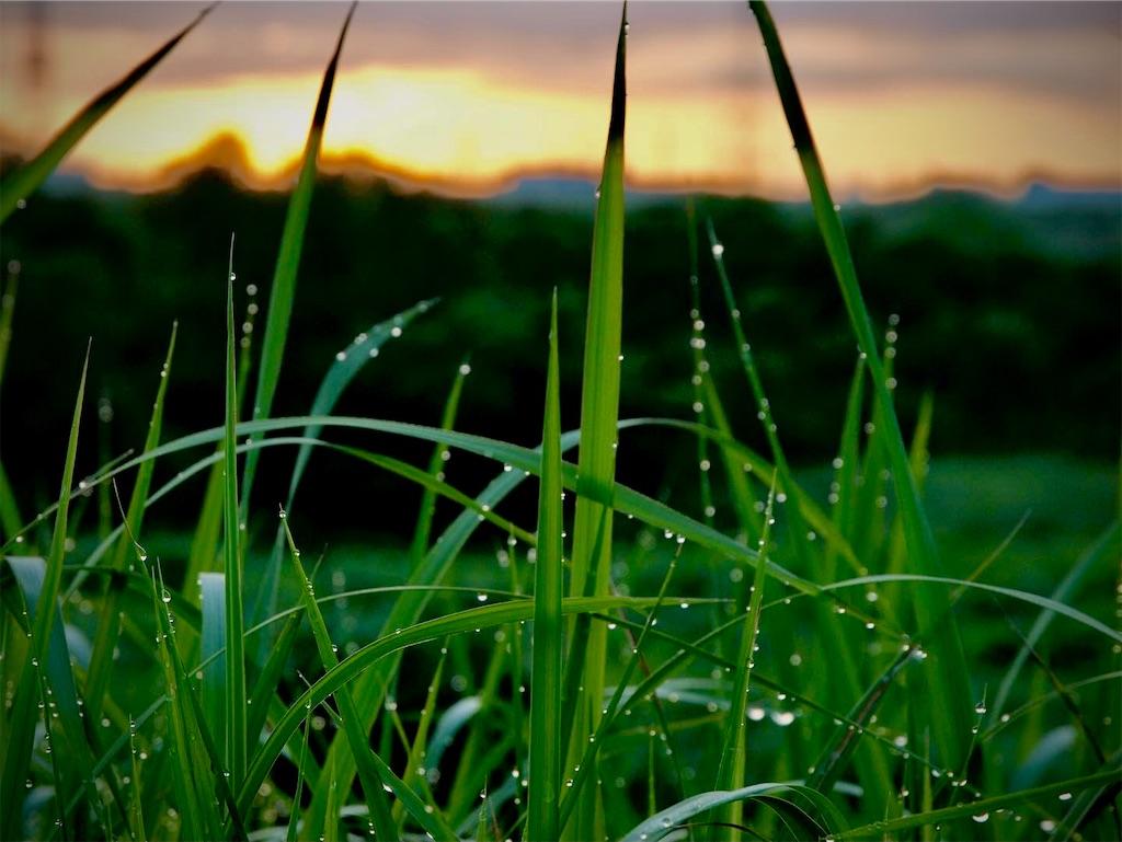 f:id:rideonjapan:20210718132010j:image