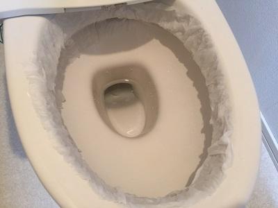 アクリルたわしを使ったトイレ掃除