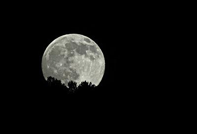 お月見をする十五夜・十三夜・十日夜について