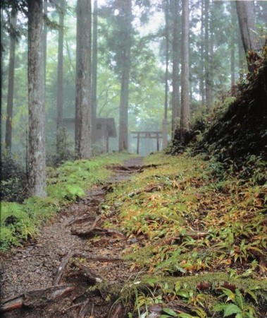 f:id:rieko-k:20100509115954j:image