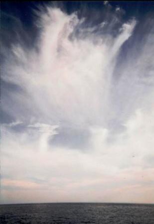 f:id:rieko-k:20100509121527j:image