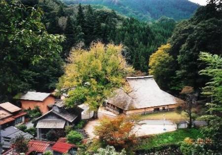 f:id:rieko-k:20100722115650j:image:left