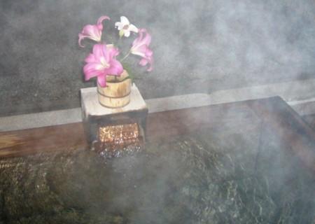 f:id:rieko-k:20101206225511j:image:left