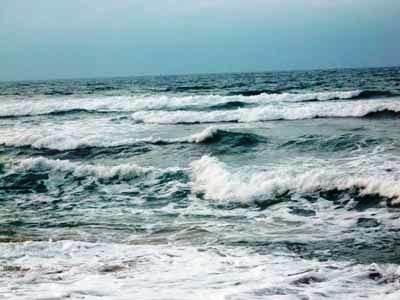 f:id:rieko-k:20101212140411j:image:left